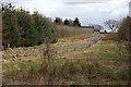 NS8371 : Roughrigg Farm by Anne Burgess