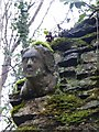 SY5587 : Stone head on St Luke's Chapel, Ashley Woods by Becky Williamson