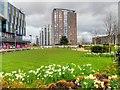 SJ8097 : The Garden at MediaCityUK by David Dixon