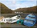 SM8024 : Rowing boats, Solva by Robin Drayton