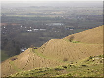 ST8412 : Child Okeford: walkers emerge on Hambledon Hill earthworks by Chris Downer