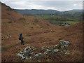 SD2889 : Small ruin above Greenholme Farm by Karl and Ali