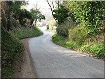 TM2598 : Brooke Road, approaching Shotesham by David Purchase