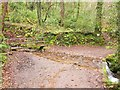SS8647 : Footbridge and ford, Hawknest Combe by Derek Harper