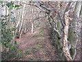 NT5169 : Upper Bolton Strip by M J Richardson