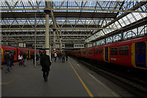 TQ3179 : Waterloo Station by Mike Pennington