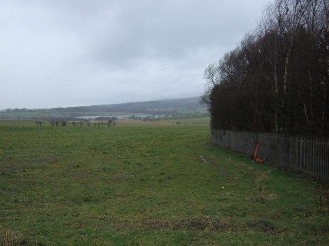 Farmland off Wigan Road
