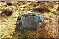 NX5071 : Memorial Stone at Dunkitterick Cottage by Billy McCrorie