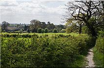 TQ2152 : Towards Kemps Farm by Ian Capper