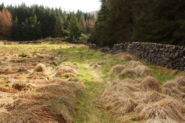 Path to Dunkitterick Cottage