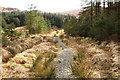 NX5071 : Path to Dunkitterick Cottage by Billy McCrorie