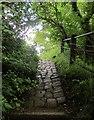SK1286 : Footpath to Ollerbrook by Derek Harper