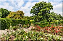 TQ4666 : Rose Garden, Priory Gardens by Ian Capper