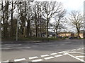TG1909 : Larkman Lane, Bowthorpe by Adrian Cable
