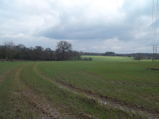Farmland by Geary Lane