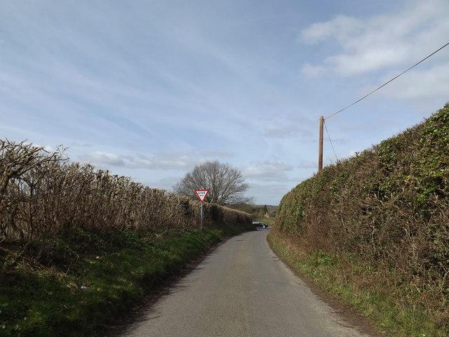 Mangreen Lane, Mangreen