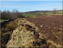 NS3678 : Old field boundary by Lairich Rig
