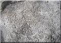 SD9165 : Crinoidal limestone by John Illingworth