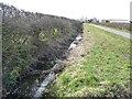 NZ4305 : Drain alongside Haggitt Hill Lane by Christine Johnstone
