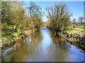 SD6526 : River Darwen, Witton Country Park (upstream) by David Dixon