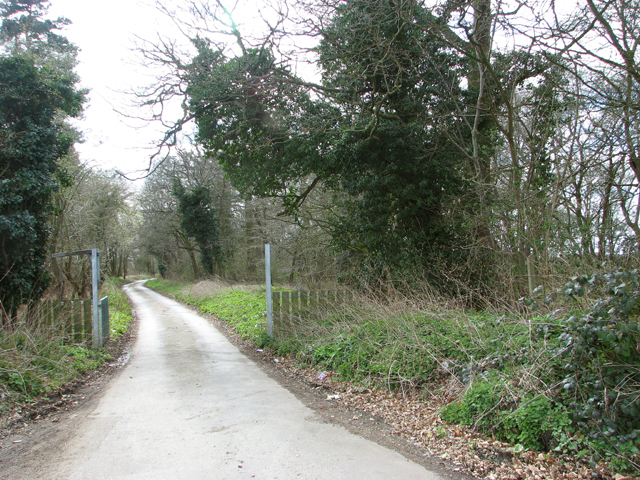 The northern end of Mangreen
