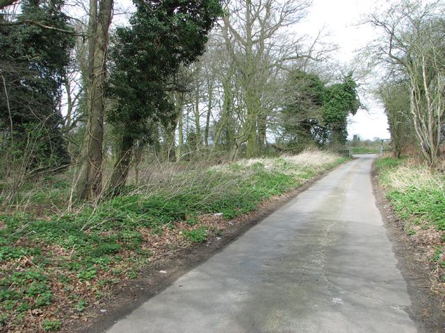 View north along Mangreen