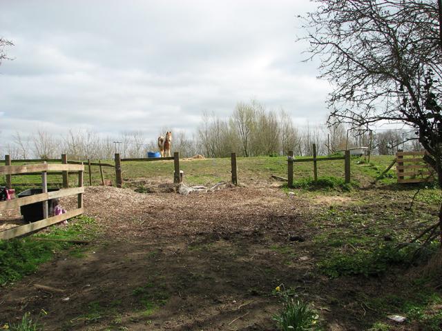 Pasture at Brooks Green