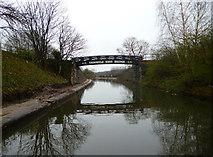 SJ8196 : Bridgewater Canal:  Throstle Nest Bridge by Dr Neil Clifton