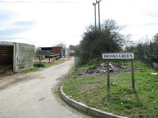 Mangreen at Brooks Green