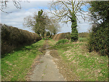 TG2103 : Grass encroaching on disused road by Evelyn Simak