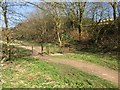 SJ8050 : Bignall End: path along former railway trackbed by Jonathan Hutchins