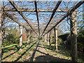 TQ2997 : Wisteria Archway, Walled Garden, Trent Park, Cockfosters, Hertfordshire by Christine Matthews