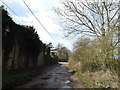 TM3288 : Church Road, Earsham by Adrian Cable