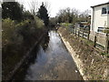 TM3288 : River Waveney off Church Road by Adrian Cable