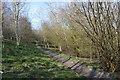 SJ8050 : Audley: Leddy's Field: footpath by Jonathan Hutchins