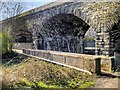 SD7910 : Stone Footbridge over the Irwell by David Dixon