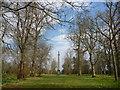 NS1059 : Isle Of Bute Landscape : Memorial Column, Mount Stuart by Richard West