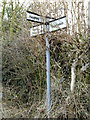 TM0661 : Roadsign on Sandford Road by Adrian Cable