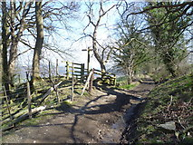 SJ2637 : Where the Offa's Dyke Path and the Llwybr Ceiriog Trail cross by Jeremy Bolwell