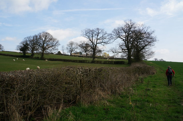 On a track to Sycamore Farm, Hazelwood