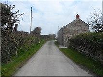 SW8773 : Trevear Lane by Anthony Parkes