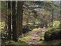 NN2101 : Footbridge over the Allt Airigh na Creige by Alec MacKinnon
