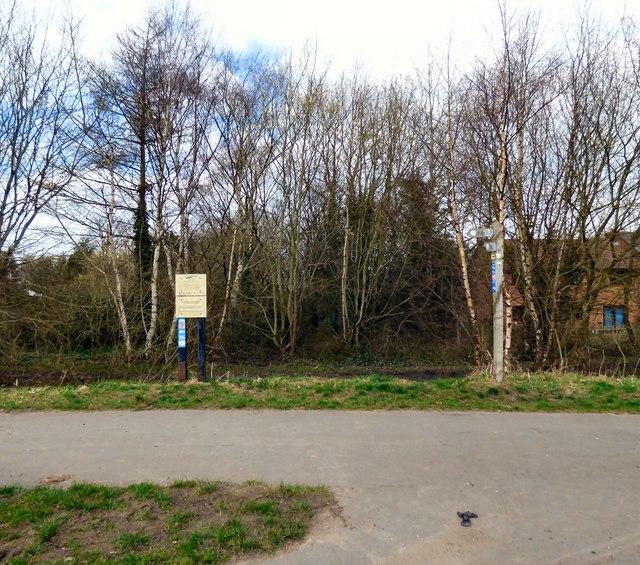 Green Lane footpath junction