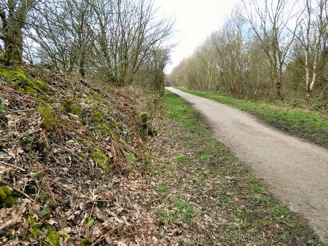 Former Godley Junction to Apethorn railway line
