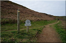 SW8471 : South West coast path towards Park Head by Ian S