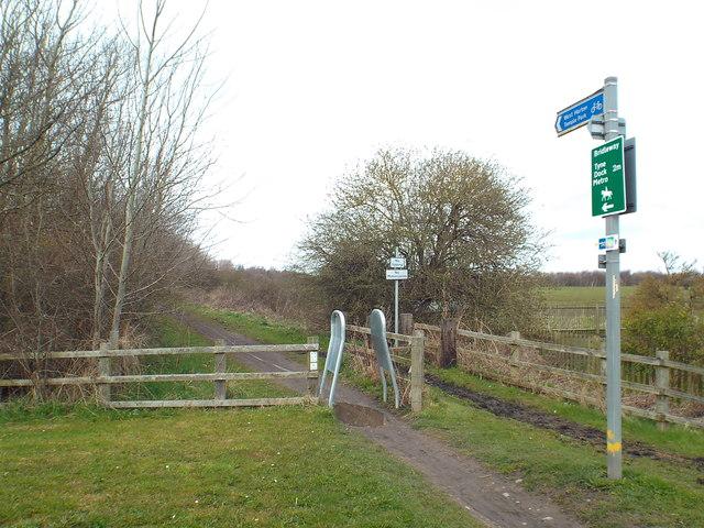 Public bridleway near East Boldon