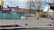 J3674 : Connswater Greenway landscaping, Belfast (April 2015) by Albert Bridge