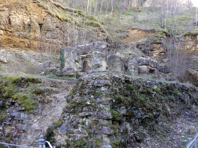 Former quarry and remains of lime kilns at Leckhampton Hill