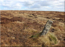 SD9834 : Boundary Stone on Dick Delf Hill by Chris Heaton