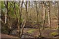 SJ6285 : Lumb Brook by Ian Greig